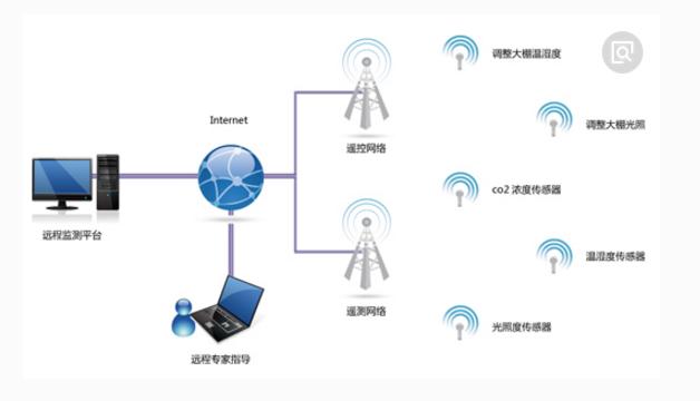 无线传感器技术在物联网领域的应用案例分析