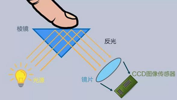 一文带您认识最热的屏下指纹识别技术