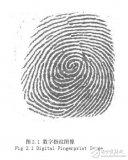 指纹识别中的图像处理研究--指纹图像的特性分析(...