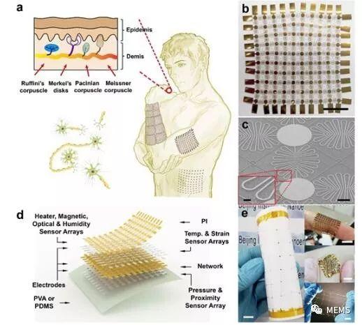 研究人员提出了一种柔性可拉伸扩展的多功能集成传感器阵列