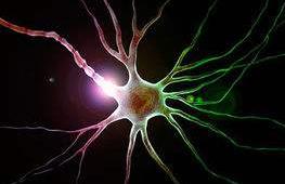 硅锗人造突触芯片可仿真大脑神经元传递讯息
