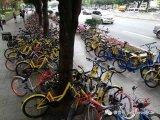 北京共享单车的控制_自动驾驶的推进