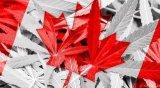 加拿大推出已知旅客数字身份识别系统原型 测试生物...