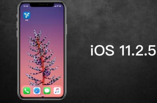 苹果关闭iOS 11/11.2.1/11.2.2验证通道 11.2.5是唯一选择