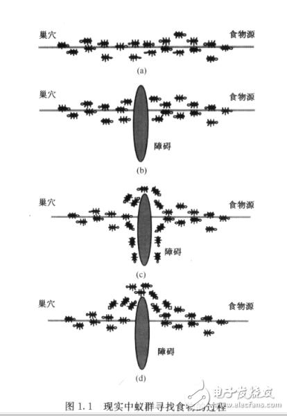 蚁群算法即相关代码实现详解—matlab之智能算...