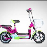电动自行车设计方案大全,内含控制器、充电器、调速及防盗等