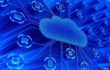 存储设备类型与存储系统网络构架的详细解析