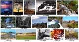 谷歌推出AI系统 可从技术和审美上给照片打分,评价照片好坏