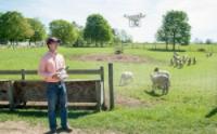美大学研究团队拟以无人机来监控羊群