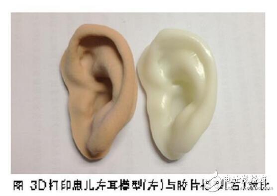 """我國科學家成功用細胞""""種出""""人類耳朵"""