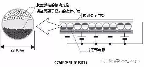 水吸乒乓球的原理_备战2016年中考物理专项训练:阿基米德原理(word版,含解析)   阿基米德原理 一.选择题(共10小题) 1.将一个体育测试用的实心球和一个乒乓球