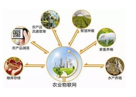 农业物联网创业方向有哪些