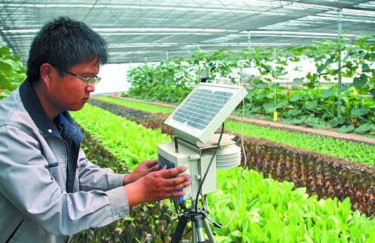 精细农业领域的无线传感器网络应用