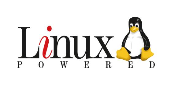 用于linux系统下编程的编译器,掌握gcc的基本用法