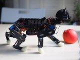 高手在民间,买不起索尼机械狗?或许这个机器猫或许你可以抱走