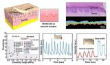 清华大学仿生石墨烯压力传感器研究取得重要进展