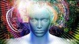 神经网络借助脑磁波,知道你在「犹豫不定」