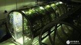 水栽法收获是普通农场10倍 移民火星不是梦
