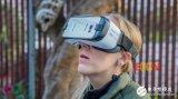 VR最大的优点竟然是这个?