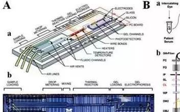 微流控系统分离CTCs方法及背景介绍