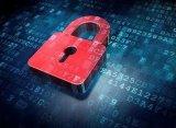 在数字化时代,网络安全被赋予新的含义