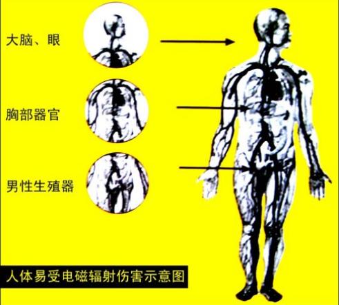 看看电磁辐射的危害有多大?