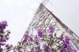 共享电力塔安全如何保障?通信基站与电力塔是否会相...
