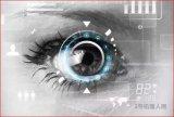 视觉导航方案正在逐渐成为不可或缺的辅助方案