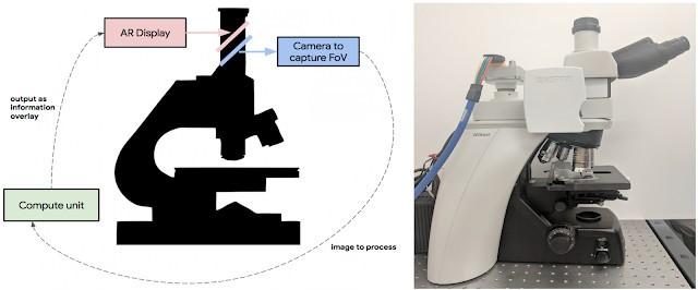 谷歌医疗AI新成果 AR显微镜分析病理切片只需几...