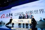 """""""自研AI芯片""""已成为阿里布局""""中国芯""""的战略组成部分"""