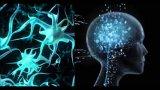 GAN对于人工智能的意义是什么?