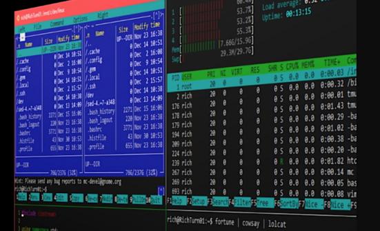 如何在Linux中使用 WSL 执行任务
