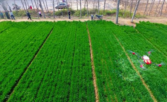 AI促智能农业民主化 最大程度优化农产质量与售价