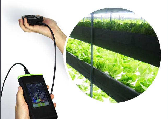 奇闻怪谈:植物生长可为LED灯供电?