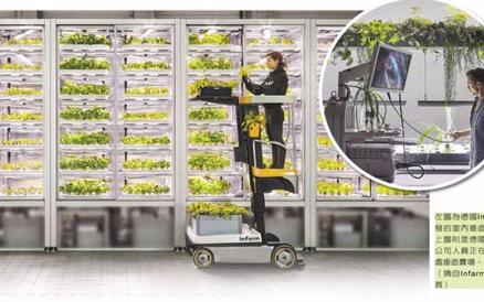 LED植物照明大大提升目前世界粮食产量