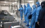 """迅立光电展出了高效PERC电池 """"二合一""""PECVD量产设备"""