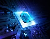 优化嵌入式系统的工作负载,专用硬件来处理真正的人...