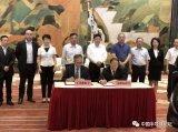 天马微电子追加投资145亿元,在武汉光谷建设G6...