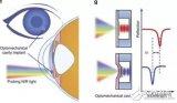 接触镜传感器系统收集24小时眼压,测量结果优于诊...