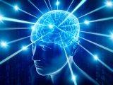 脑科学领域引领世界科学的十大前沿科学问题发布