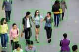 行人检测算法的发展历程