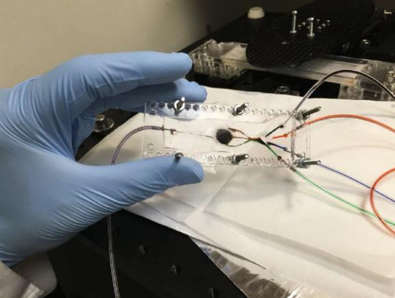 3D打印光固化技术大跃进 复合材料重现精密人造组...