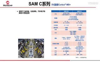 Microchip ARM® Cortex®-M...
