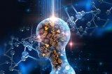 AI如何影响商业决策?AI决策将成为改写社会经济...