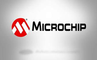 MICROCHIP MINUTES 4 - HE...