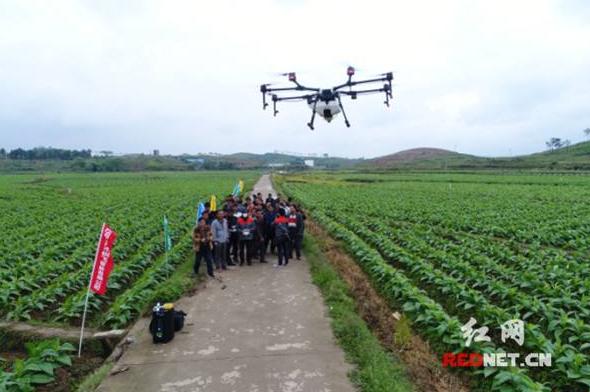 大疆与先正达合作 推进我国农业数字化和精准化发展