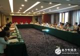 电力可持续发展高层圆桌会议,为电力可持续发展提出...