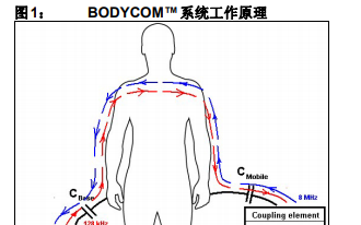 新型短程无线连接技术BodyCom系统的详细中文资料概述
