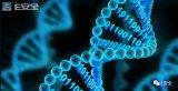 美国情报界关于DNA存储海量数据的探索