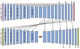 采用的网络架构,实现了基于图像强度的变分深度自编码器